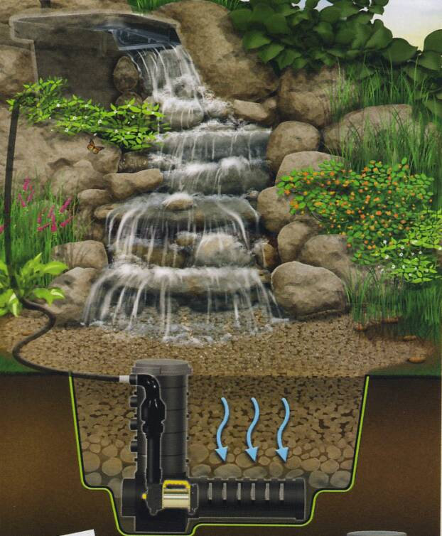 Landscaping Ponds And Waterfalls: Water Gardening
